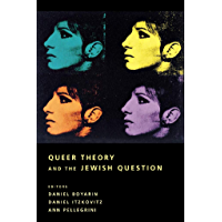 Queer Theory and the Jewish Question (Between Men-Between Women: Lesbian and Gay Studies) book cover