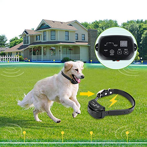 Buy electric fence for large dogs