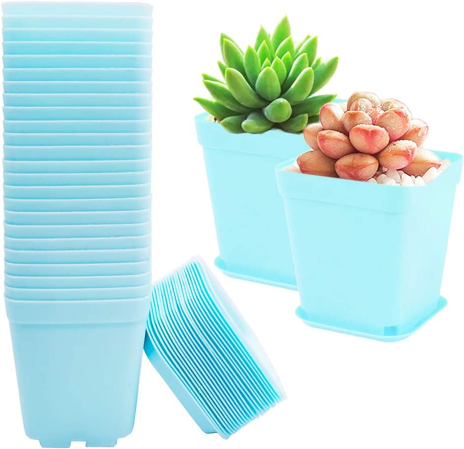 24 Pack 3 Inch Plastic Square Nursery Pots Blue Plastic Plant Seed Starting Container,Garden Flower Pots with Trays for Growing Flowers Succulents and Small Saplings