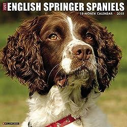 Just English Springer Spaniels 2018 Calendar
