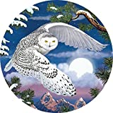 Bits and Pieces - 1000 Piece Round Jigsaw Puzzle for Adults - Snowy Owl - 1000 pc Beautiful Bird Jigsaw by Artist Rosiland Solomon
