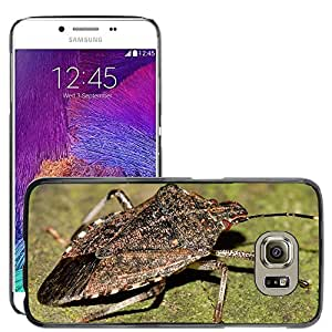 Super Stella Slim PC Hard Case Cover Skin Armor Shell Protection // M00149489 Hemiptera Insects Bug // Samsung Galaxy S6 (Not Fits S6 EDGE)