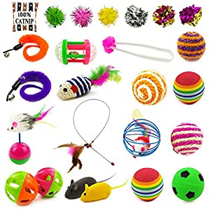 HOLICOLOR 25 Pieces Cat Toys for Kitten Includes Wand, Massager, Balls, Bells, Mice, Catnip Cushion & More (Colorful) 109