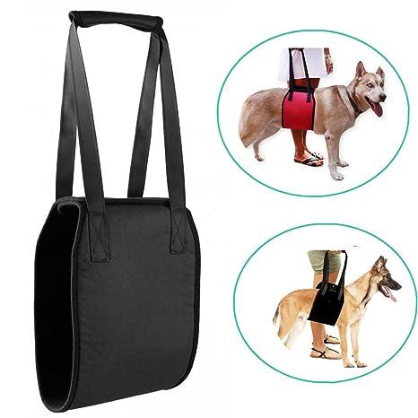Perros Velcro Ascensor Harness, ayudan a Antiguos Perros para ...
