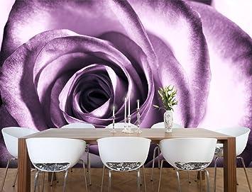Fototapete Rose violett Nr.51 Größe: 420x270cm Schlafzimmer Liebe Romantik  Tapete