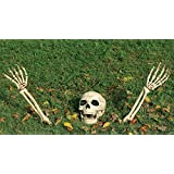 3-Piece Buried Alive Skeleton Kit - ST
