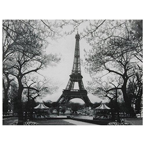 Oriental Furniture Eiffel Tower Park Canvas Wall