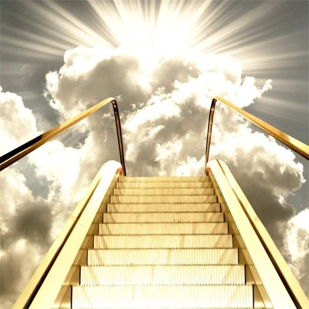 EdCott 5x5ft Gold Shining Steps Telón de Fondo Sunrise Golden The Rail Escalera al Cielo: Amazon.es: Electrónica