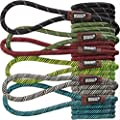 Friends Forever Extremely Durable Dog Slip Rope Leash, Premium Quality Mountain Climbing Rope Lead, Strong, Sturdy Comfortable Leash Supports The Strongest Pulling Large Medium Dogs 6 feet by Friends Forever
