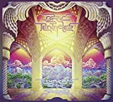 Technicians Of The Sacred by Ozric Tentacles (2015-08-03)