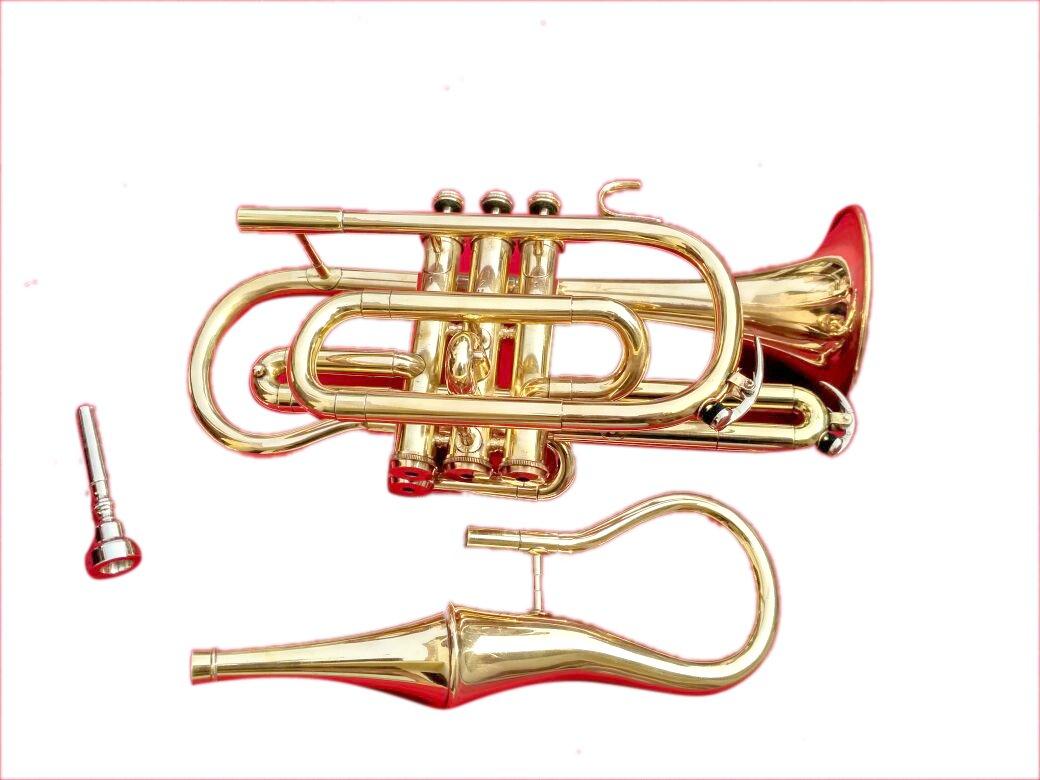 Surbhi Music Bb Flat Brass Finish Echo Conret With Free Case Box & Mouthpiece