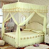 XRXY Mosquito Net Thicken Stainless Steel Floor-Standing Square Top Mosquito Net/Encryption Continental Double Bed Practical Mosquito Net/All-Round Anti-Mosquito Bed Mantle (4 Colors Available)