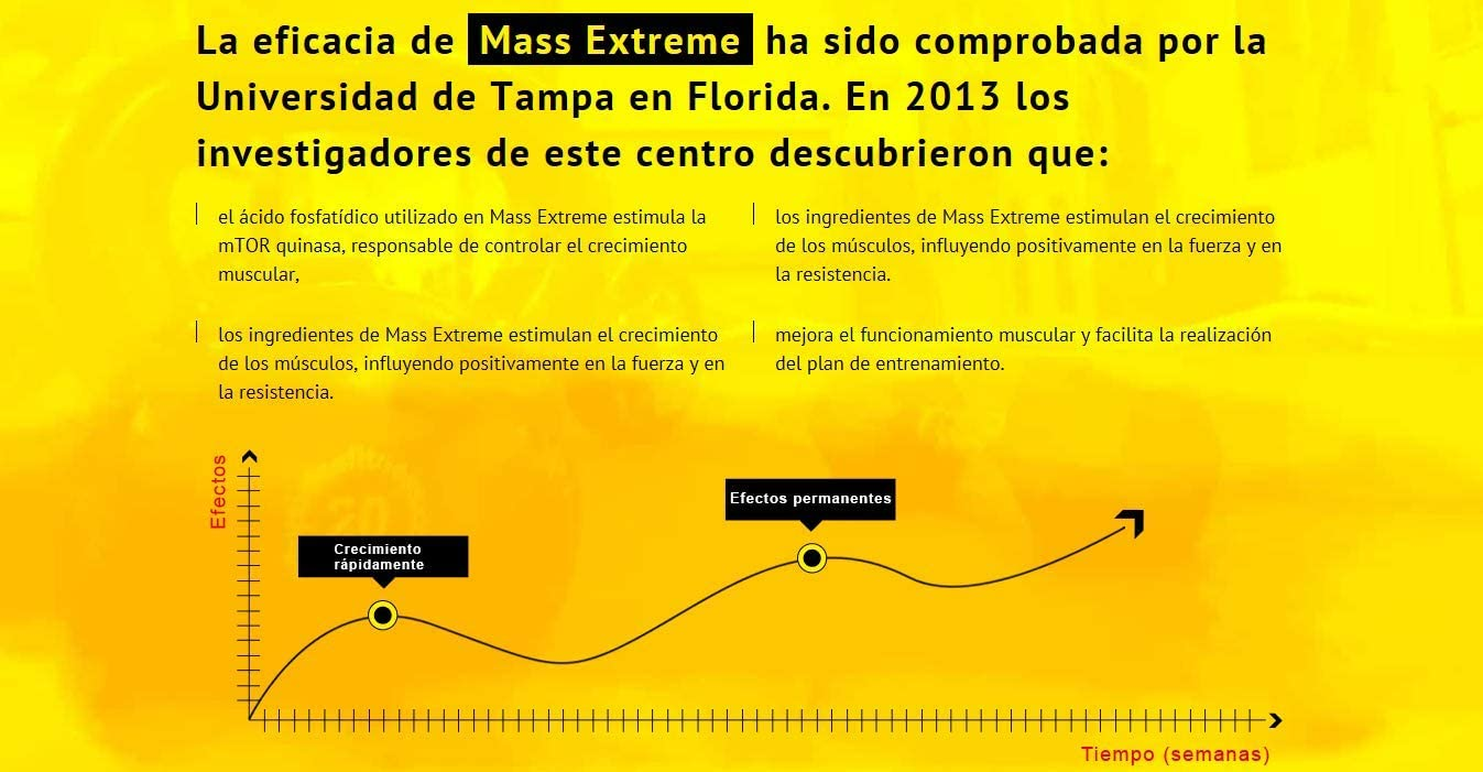 MASS EXTREME Premium - El suplemento para desarrollar la masa ...