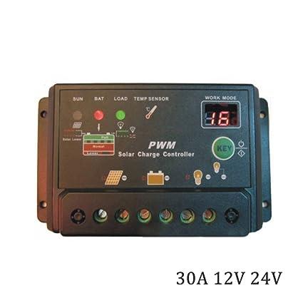 Amazon.com: DPJ 10A 20A 30A 12V 24V Cargador de Batería ...