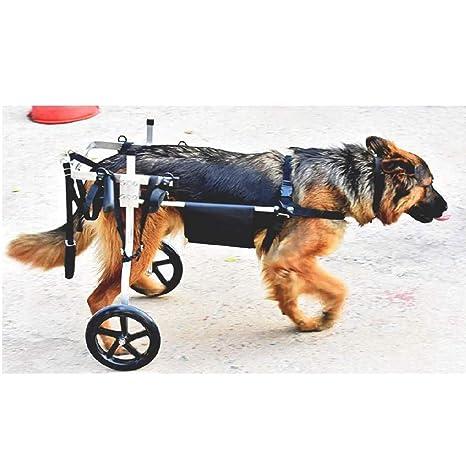 Silla de ruedas para perros ajustable Ruedas Silla de ruedas para perros - Para perros medianos de ...