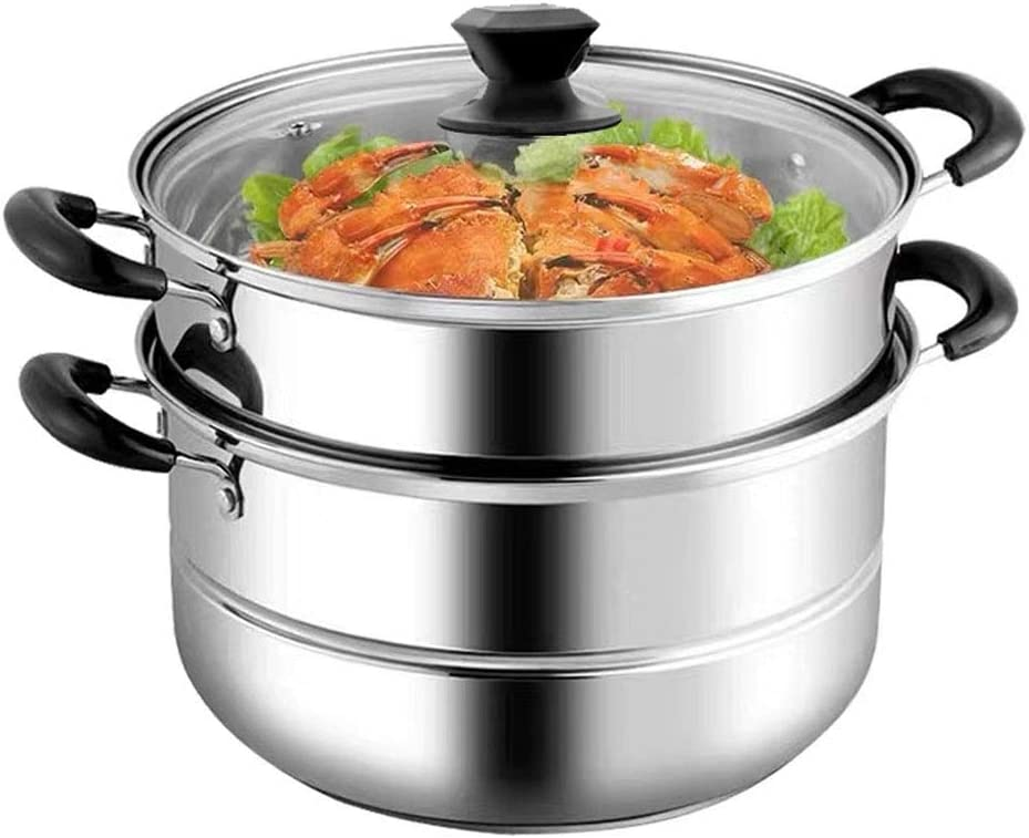 Steamer Pot with Transparent lid, 2 Tier 11 inch Big Stainless Steel Steamer Cookware Pot Saucepot Multi-layer Boiler Steaming(Thicken)