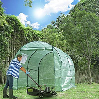 "BestMassage Portable Greenhouse, Indoor Outdoor Large Plant Shelves Tomato Herb Canopy Winter Walk-in Green House for Patio(L118""W77""H76"") by BestMassage"
