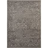 Safavieh PAL124-78124-8 Palazzo Collection Light Grey & Anthracite Area Rug, 8' x 11'