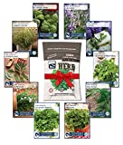 Culinary Herb Seed Collection - 100% NON-GMO, Easy-to Grow Heirloom Herb Garden - from a REAL Seed Company! Basil, Chives, Cilantro, Dill, Lavender, Oregano, Parsley, Rosemary, Sage and Thyme.