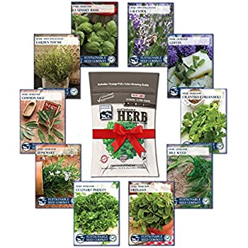 Culinary Herb Seed Collection   100% NON GMO Basil, Chives, Cilantro,