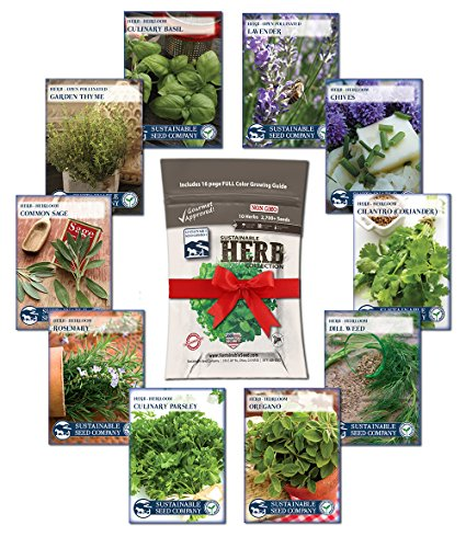 Culinary Herb Seed Collection - 100% NON-GMO,