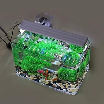 JIANGU - Armario para Sala de Estar, diseño de pecera Creativa: Amazon.es: Productos para mascotas