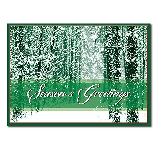 "Christmas Holiday Card H1214. A traditional Winter scene with a verse of ""Merry Christmas and Best Wishes for a Happy New Year"". Gold foil-lined envelopes."