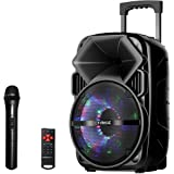 EARISE Bluetooth PA Speaker System with Wireless Microphone, Portable Outdoor Karaoke Machine - Fun Wireless Speaker for…