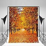 Autumn Trees Theme Lfeey 10x10ft Vinyl Photography Background Backdrops 3x3m Photo Studio Props