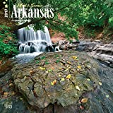 Arkansas, Wild & Scenic 2017 Square