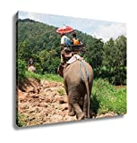 Ashley Canvas, Elephant Trekking Through Jungle In Northern Thailand, Home Decoration Office, Ready to Hang, 20x25, AG5258824
