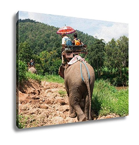 Ashley Canvas, Elephant Trekking Through Jungle In Northern Thailand, Home Decoration Office, Ready to Hang, 20x25, AG5258824 by Ashley Canvas