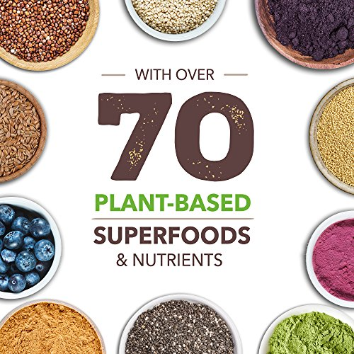 Ka'Chava Meal Replacement Shake - A Blend of Organic Superfoods and Plant-Based Protein - The Ultimate All-In-One Whole Body Meal. (Vanilla) 900g Bag = 15 meals (60g serving size) 5