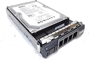 "Dell F420T 250GB 32MB 3.0Gbps 7.2K 3.5"" Enterprise Class Sata Hard Drive in R & T Series Tray (Certified Refurbished)"