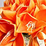 Bluefun-Real-Touch-PU-Artificial-Amaryllis-Flowers-Bunch-Bouquet-Arrangements-for-Home-Kitchen-Living-Room-Dining-Table-Wedding-Centerpieces-Decorations