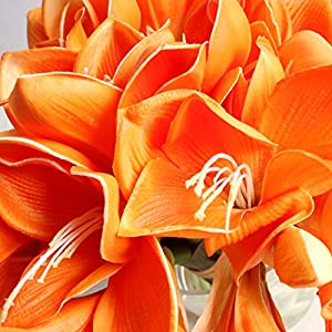 Bluefun Real Touch PU Artificial Amaryllis Flowers Bunch Bouquet Arrangements for Home Kitchen Living Room Dining Table Wedding Centerpieces Decorations 2