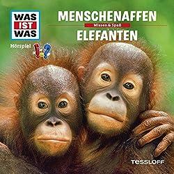 Menschenaffen / Elefanten (Was ist Was 33)
