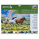 Reeves Large Acrylic Painting By Numbers - Galloping Horses
