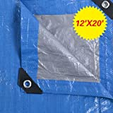 GHP 12' x 20' Heavy Duty Light Weight Silver Blue Reversible Colors Tarp Canopy