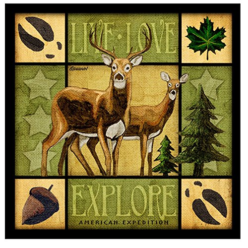Lodge Series Whitetail Deer Set of 4 Stone Coasters (Outdoor Coasters compare prices)