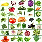 1000 tomatoe seeds - Vegetable Seeds - 37 Varieties of Non GMO, Non Hybrid, Heirloom, Open Pollinated Garden Seed – High Protein Pack, 6 Different Types of Beans and Lots More!! Packed in Zippered Mylar Bag.