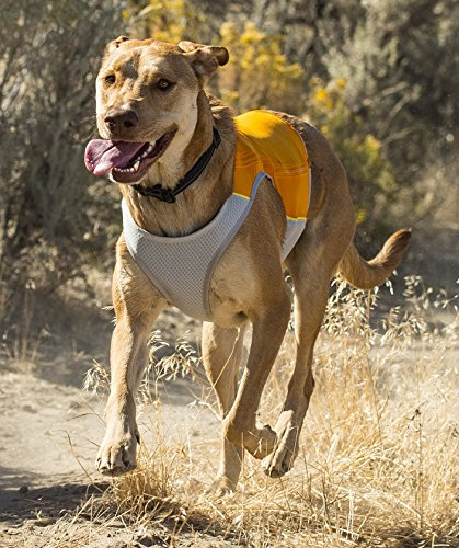RUFFWEAR Dog New Jet Stream ♦ HIGH Performance Cooling Vest Jacket and Colors (Large, Salamander Orange)