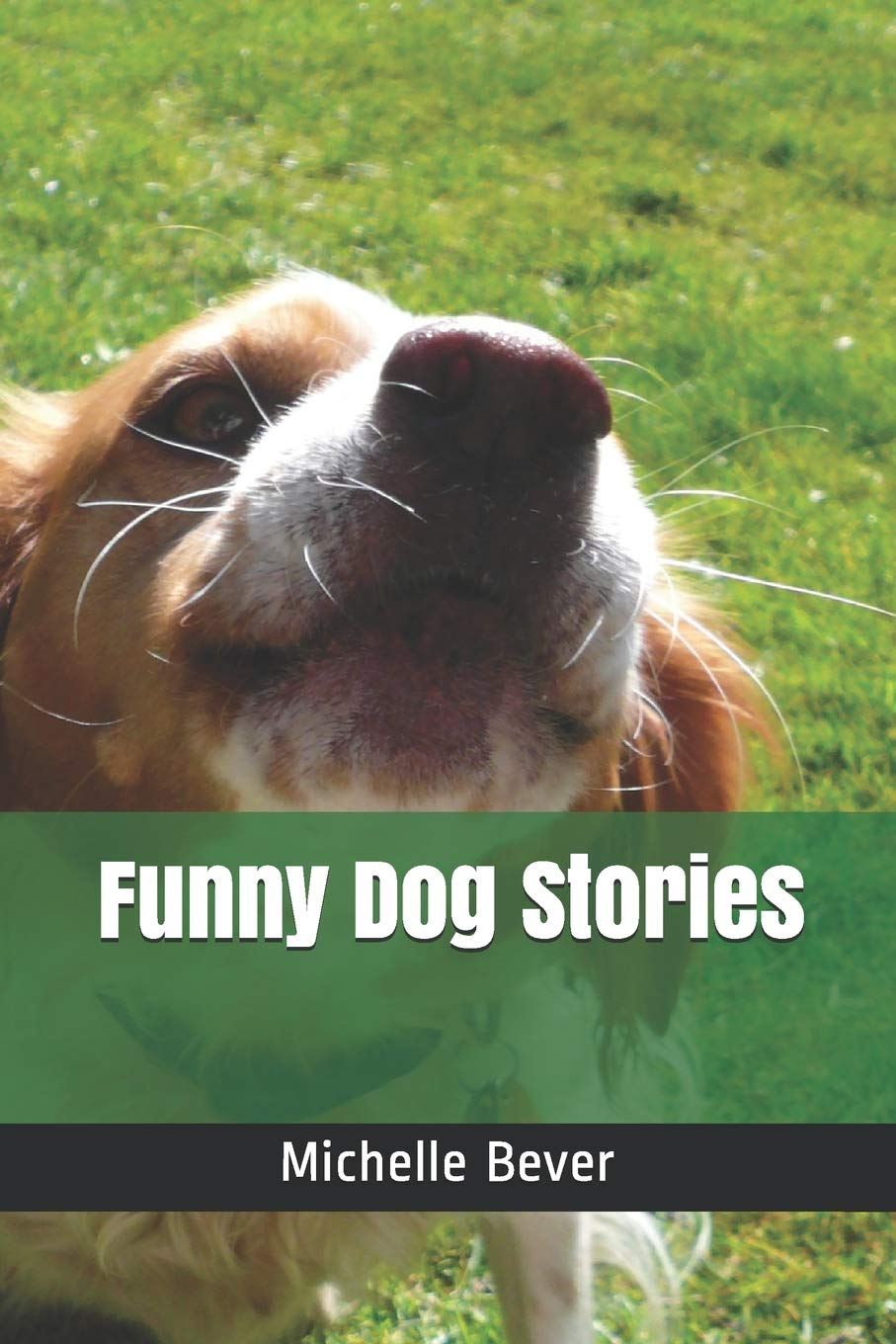 Funny Dog Stories: Michelle Bever: 9781728713175: Amazon com