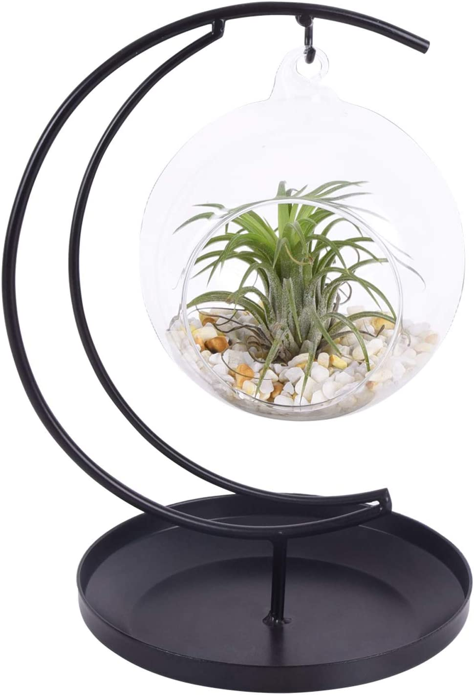 AUTOARK Glass Vase Plant Terrarium with Black Metal Tray Stand,Ornament Display Stand,Office Desktop Potted Stand,Home & Office Decor Accent,Moon Shape Design,1 Globe,APT-014