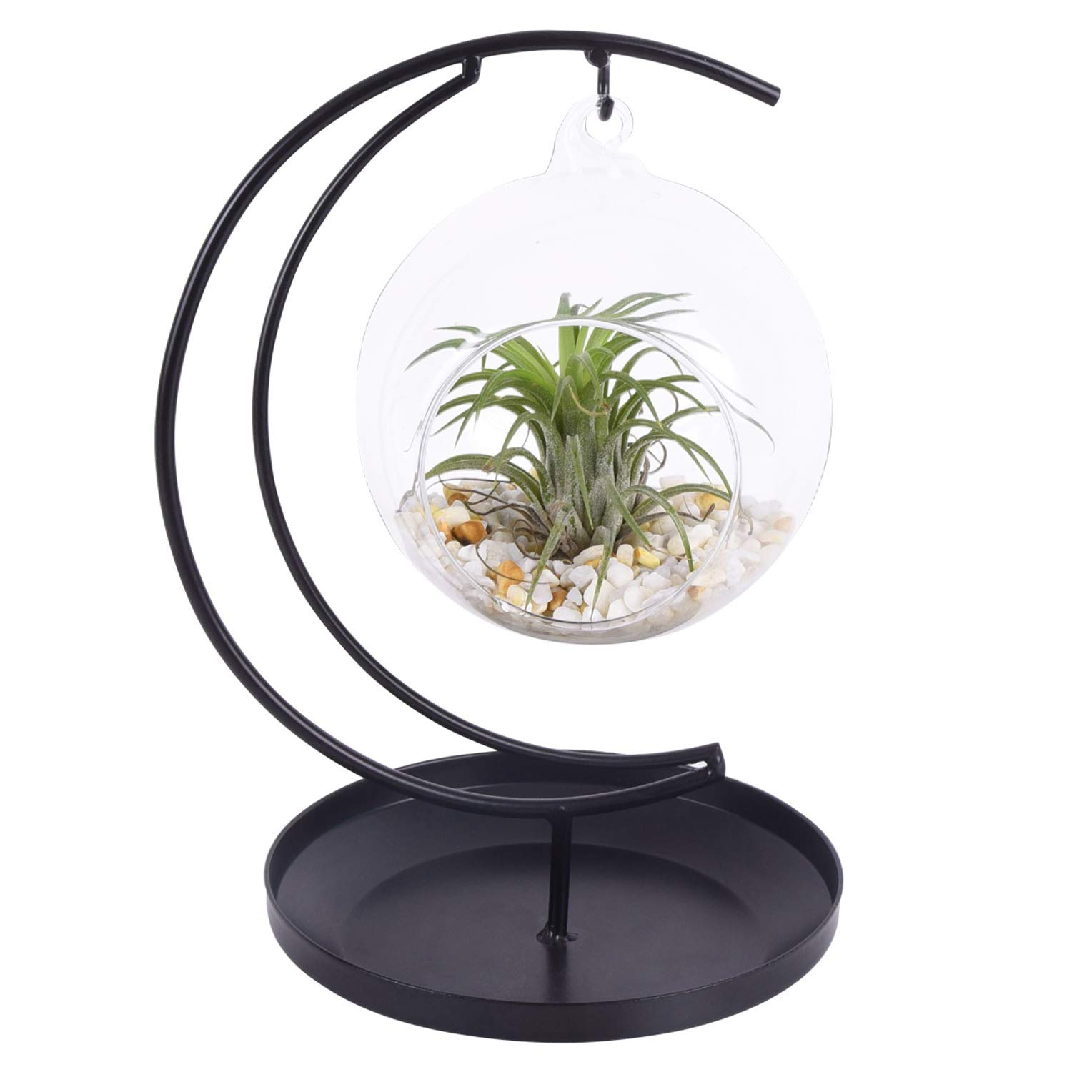 AUTOARK Glass Vase Plant Terrarium with Black Metal Tray Stand,Ornament Display Stand,Office Desktop Potted Stand,Home & Office Decor Accent,Moon Shape Design,1 Globe,APT-014 by AUTOARK