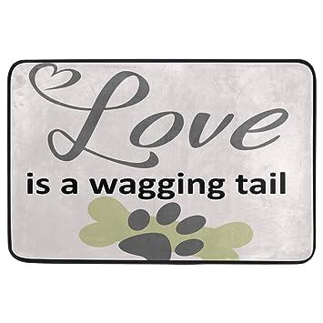 Amazon com: Funny Dog Decorative Doormat Non Slip Washable