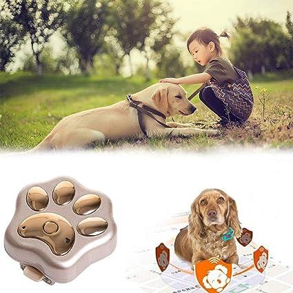 QYWSJ Rastreador de GPS para Perros Y Gatos,Rastreador de Mini,GPS En Tiempo