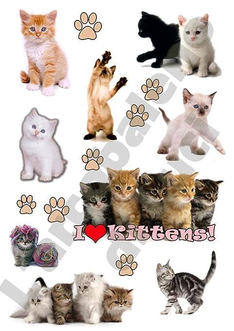 AWS 9 Stickers Gatitos Gatos I Love Gatitos Cachorros Pegatinas Impermeables Sugar Cat Cats Gato Wipe