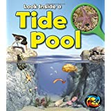 Tide Pool: Look Inside