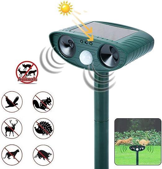 Ahuyentador de Gatos bigbutterflyde Solar Animal repelente Ultrasonido para ahuyentar animales Defensas y luz flash para perros, gatos, ardilla, rata, ahuyentar etc. impermeables Ahuyentador Ahuyentador de Gatos Perros: Amazon.es: Jardín